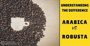 TCB-Feature-Arabica-Vs-Robusta-Coffee-Bean