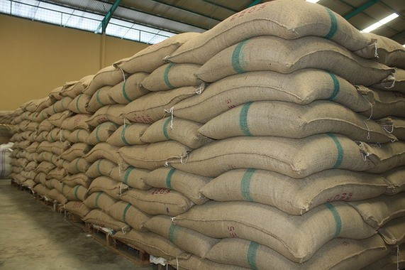 Importer Bags Coffee In Warehouse