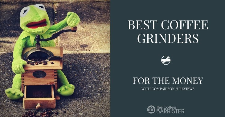 Best Coffee Grinder for the Money 2021 [Starter's Guide & Reviews]