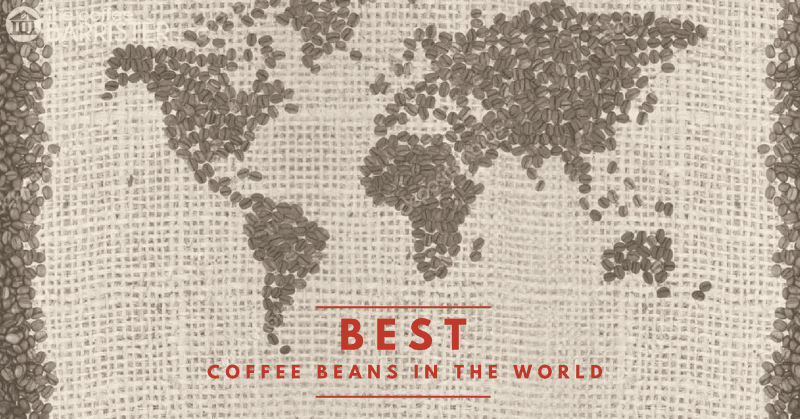 What's The Best Coffee Beans In The World?